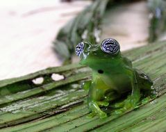 Image of Ghost Glass Frog