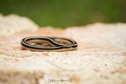 Image of Pine-Oak Snake