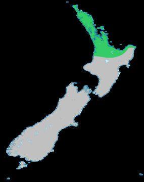 """<span class=""""translation_missing"""" title=""""translation missing: en.medium.untitled.map_image_of, page_name: &lt;i&gt;Litsea calicaris&lt;/i&gt; (A. Cunn.) Benth. &amp; Hook. fil. ex Kirk"""">Map Image Of</span>"""