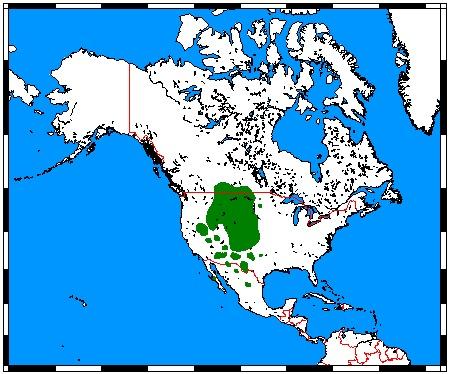 "<span class=""translation_missing"" title=""translation missing: en.medium.untitled.map_image_of, page_name: pronghorn"">Map Image Of</span>"