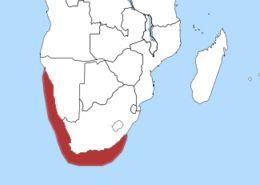 Map of waterbirds