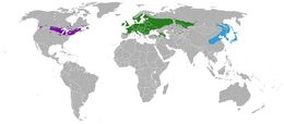 "<span class=""translation_missing"" title=""translation missing: en.medium.untitled.map_image_of, page_name: European cranberrybush"">Map Image Of</span>"