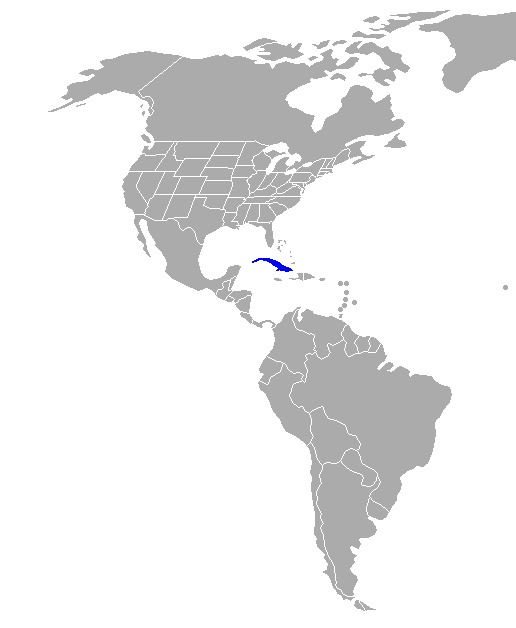 Map of vireos