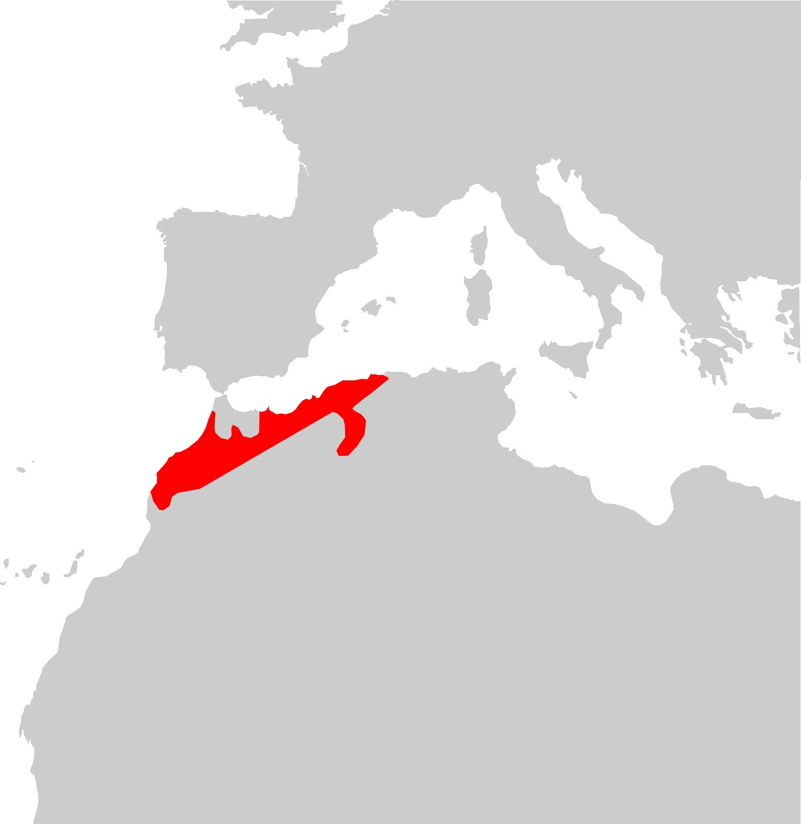 Map of Algerian skink