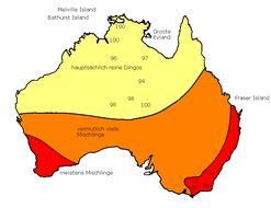 Map of Dingo