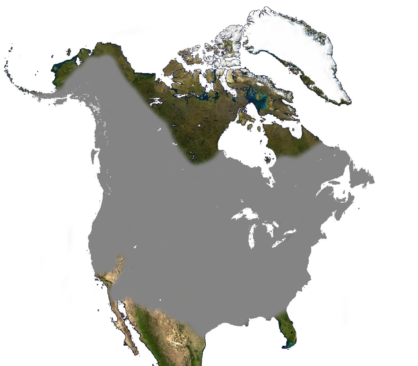 "<span class=""translation_missing"" title=""translation missing: en.medium.untitled.map_image_of, page_name: beavers"">Map Image Of</span>"