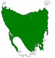 Map of Tasmanian wolf