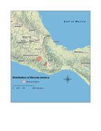 """<span class=""""translation_missing"""" title=""""translation missing: en.medium.untitled.map_image_of, page_name: &lt;i&gt;Abronia mixteca&lt;/i&gt; Bogert &amp; Porter 1967"""">Map Image Of</span>"""