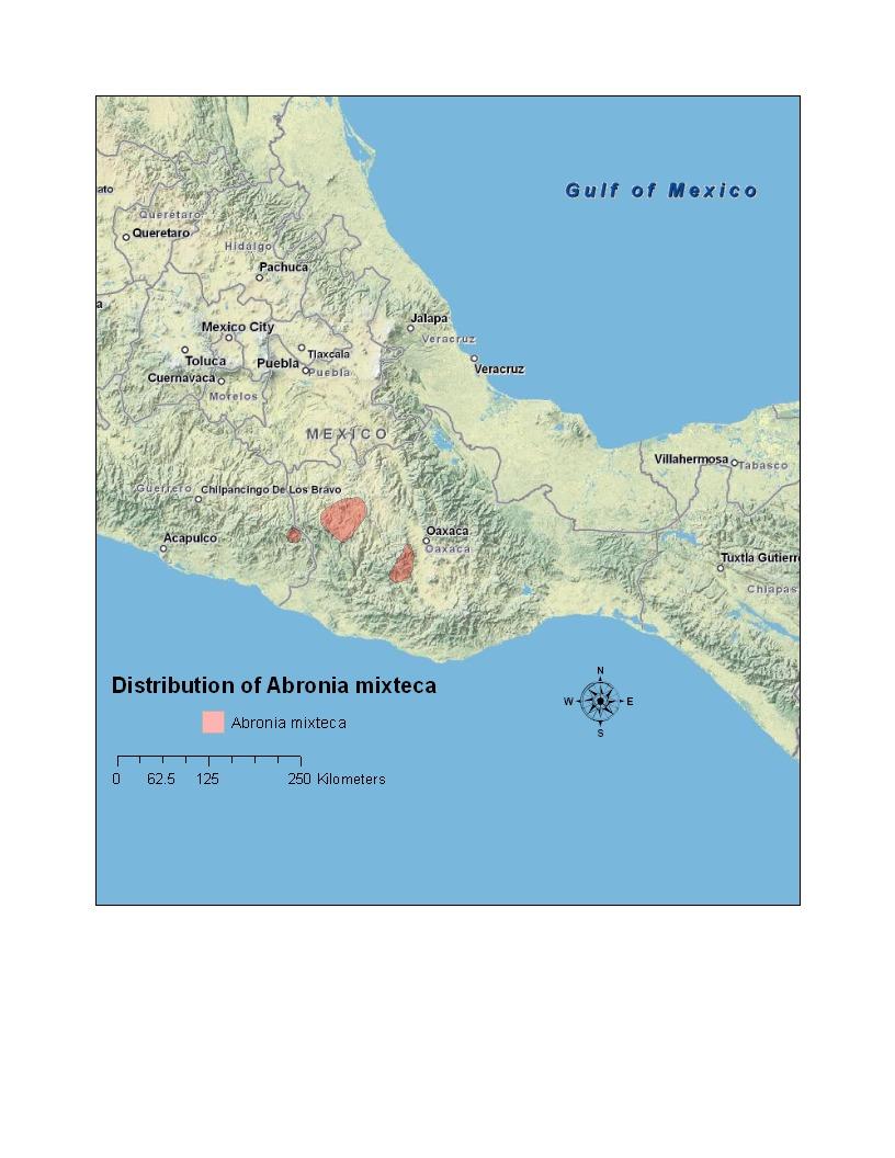 "<span class=""translation_missing"" title=""translation missing: en.medium.untitled.map_image_of, page_name: Mixtecan Arboreal Alligator Lizard"">Map Image Of</span>"
