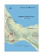 "<span class=""translation_missing"" title=""translation missing: en.medium.untitled.map_image_of, page_name: Oaxaca Arboreal Alligator Lizard"">Map Image Of</span>"
