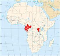 "<span class=""translation_missing"" title=""translation missing: en.medium.untitled.map_image_of, page_name: Gorillas"">Map Image Of</span>"