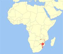 "<span class=""translation_missing"" title=""translation missing: en.medium.untitled.map_image_of, page_name: Nyala"">Map Image Of</span>"
