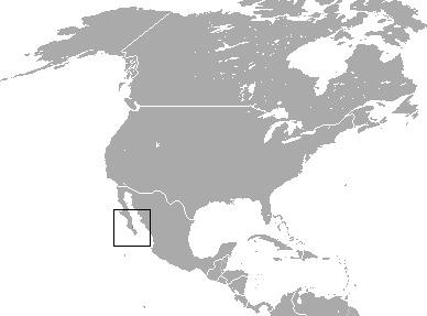 "<span class=""translation_missing"" title=""translation missing: en.medium.untitled.map_image_of, page_name: Black Jackrabbit"">Map Image Of</span>"