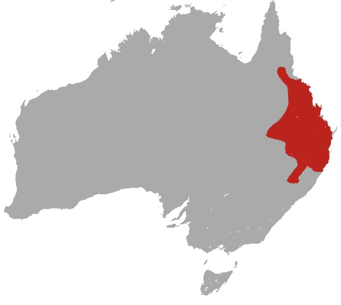 Map of Black-striped Scrub Wallaby