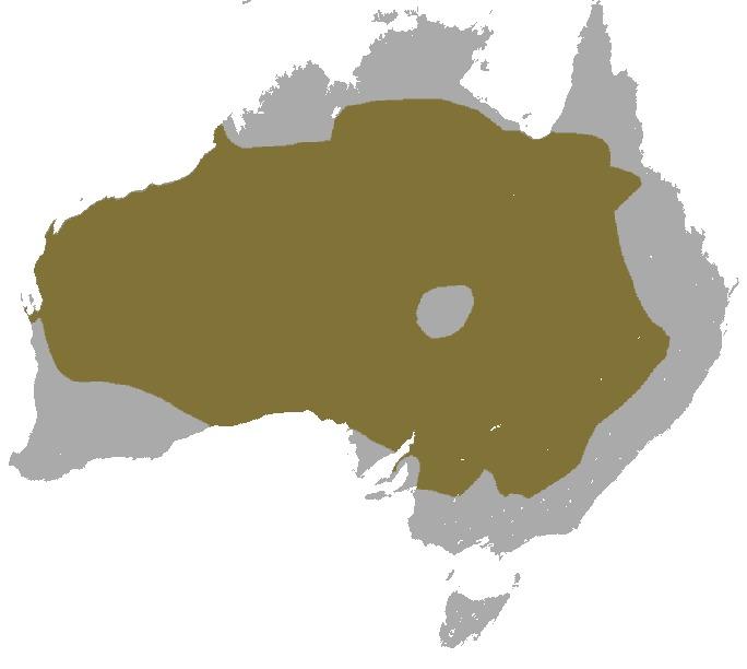 Map of red kangaroo