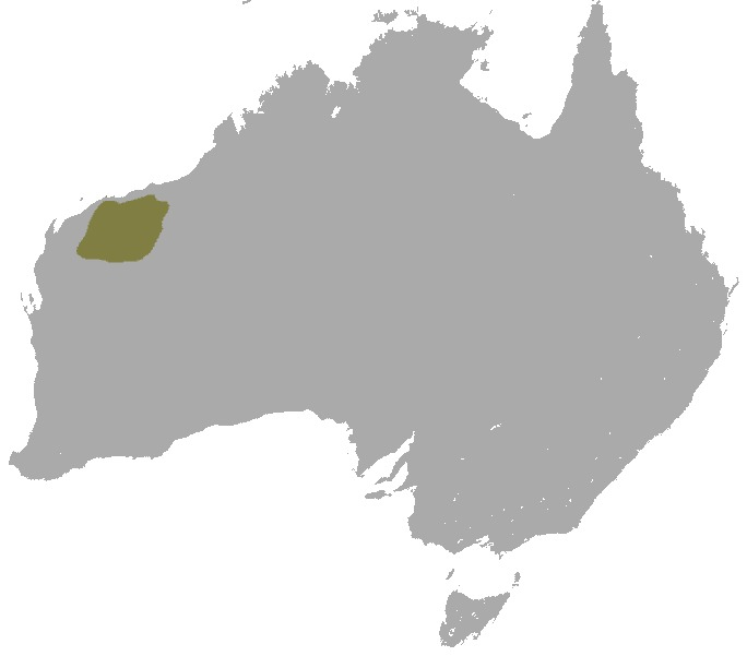 Map of Rothschild's Rock Wallaby