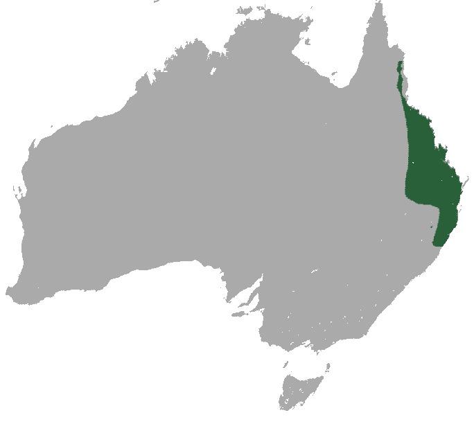 Map of Flier