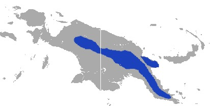 Map of Lesser Forest Wallaby