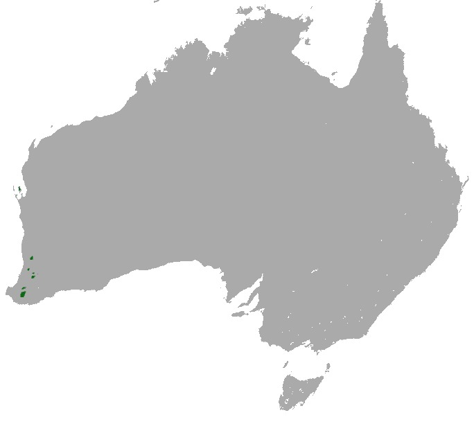 Map of short-nosed 'rat'-kangaroos