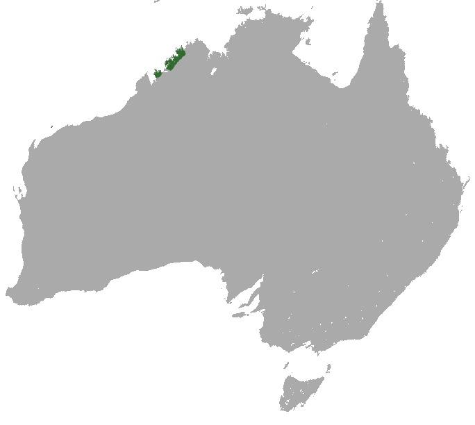 Map of Golden bandicoot