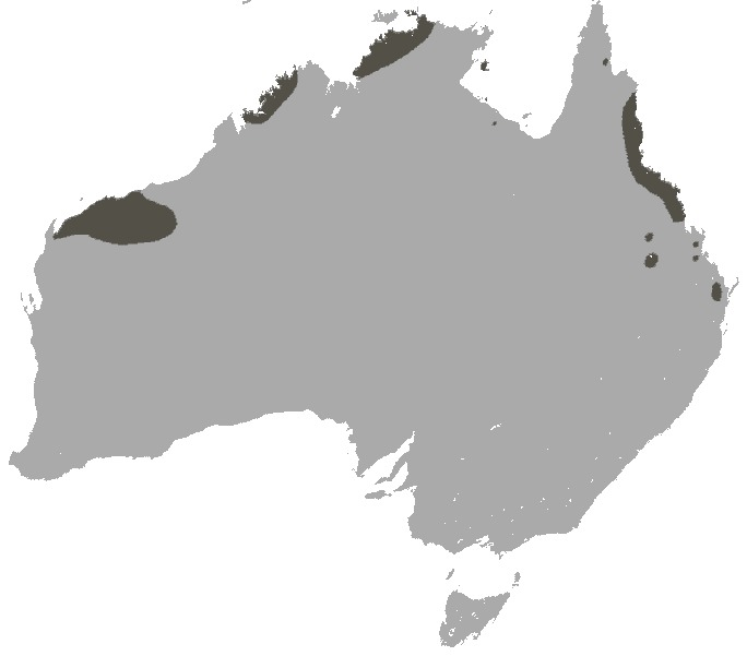 Map of Northern Quoll
