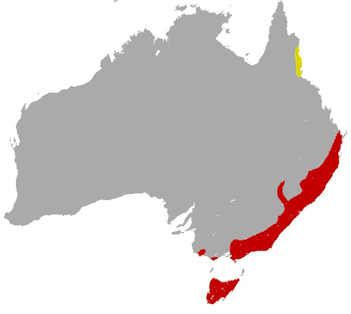 Map of Tiger Quoll