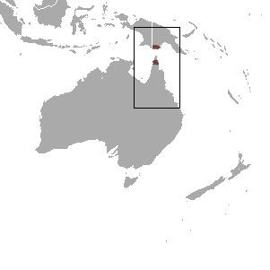 "<span class=""translation_missing"" title=""translation missing: en.medium.untitled.map_image_of, page_name: Chestnut Dunnart"">Map Image Of</span>"