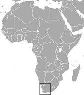 "<span class=""translation_missing"" title=""translation missing: en.medium.untitled.map_image_of, page_name: Visagie&#39;s Golden Mole"">Map Image Of</span>"