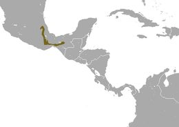 """<span class=""""translation_missing"""" title=""""translation missing: en.medium.untitled.map_image_of, page_name: Mexican Small-eared Shrew"""">Map Image Of</span>"""