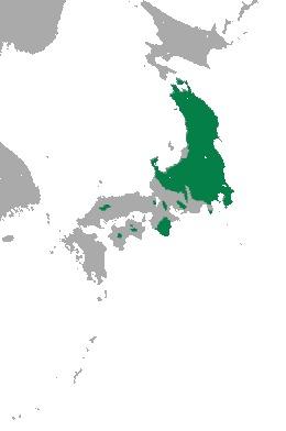 "<span class=""translation_missing"" title=""translation missing: en.medium.untitled.map_image_of, page_name: Lipotyphla"">Map Image Of</span>"