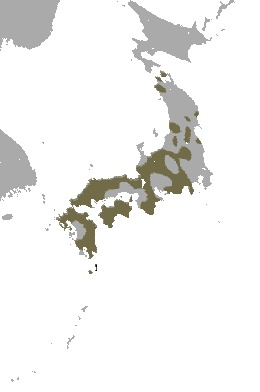"""<span class=""""translation_missing"""" title=""""translation missing: en.medium.untitled.map_image_of, page_name: Japanese Macaque"""">Map Image Of</span>"""