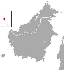Image of Natuna Island Surili