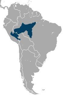 "<span class=""translation_missing"" title=""translation missing: en.medium.untitled.map_image_of, page_name: Lagothrix"">Map Image Of</span>"