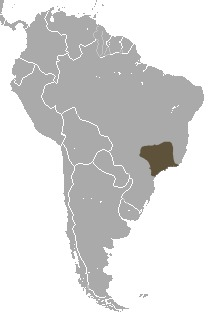 Map of Black-fronted Titi Monkey