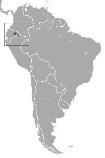 "<span class=""translation_missing"" title=""translation missing: en.medium.untitled.map_image_of, page_name: Golden-mantle Saddleback Tamarin"">Map Image Of</span>"