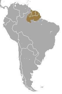 "<span class=""translation_missing"" title=""translation missing: en.medium.untitled.map_image_of, page_name: Golden-handed Tamarin"">Map Image Of</span>"