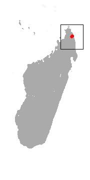 "<span class=""translation_missing"" title=""translation missing: en.medium.untitled.map_image_of, page_name: Golden-crowned Sifaka"">Map Image Of</span>"
