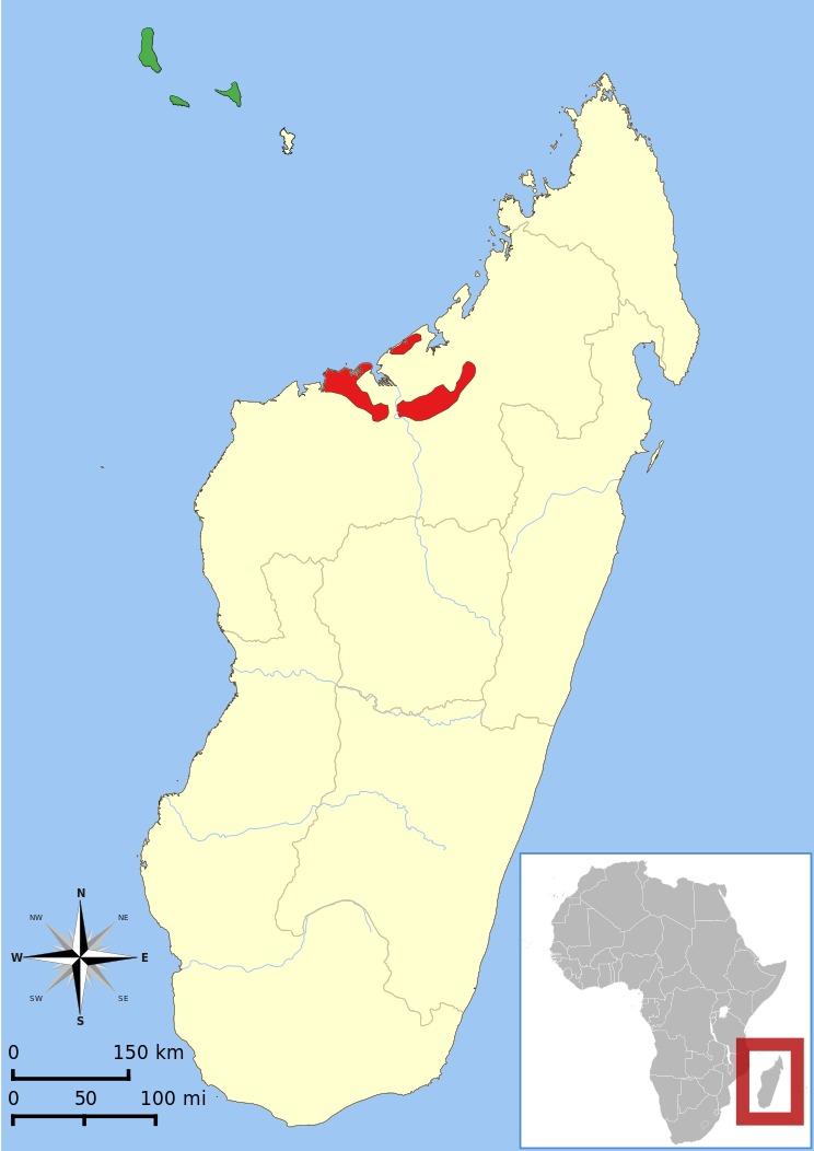 "<span class=""translation_missing"" title=""translation missing: en.medium.untitled.map_image_of, page_name: Mongoose Lemur"">Map Image Of</span>"