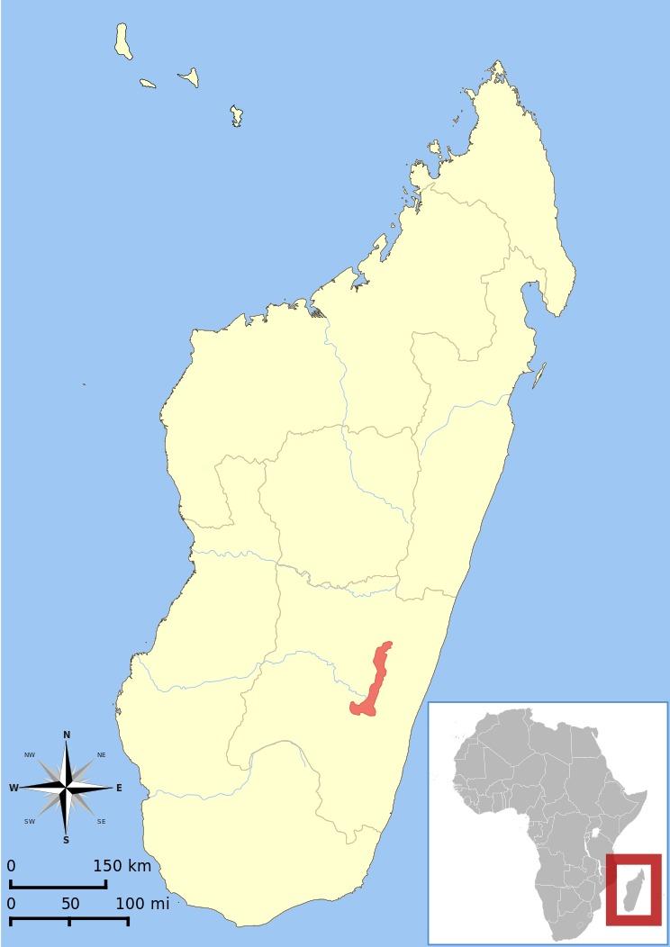 "<span class=""translation_missing"" title=""translation missing: en.medium.untitled.map_image_of, page_name: true lemurs"">Map Image Of</span>"