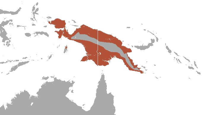 Map of Flying foxes