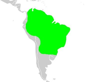 Map of Brazilian Tapir