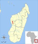 "<span class=""translation_missing"" title=""translation missing: ar.medium.untitled.map_image_of, page_name: &lt;i&gt;Nesomys lambertoni&lt;/i&gt; G. Grandidier 1928"">Map Image Of</span>"