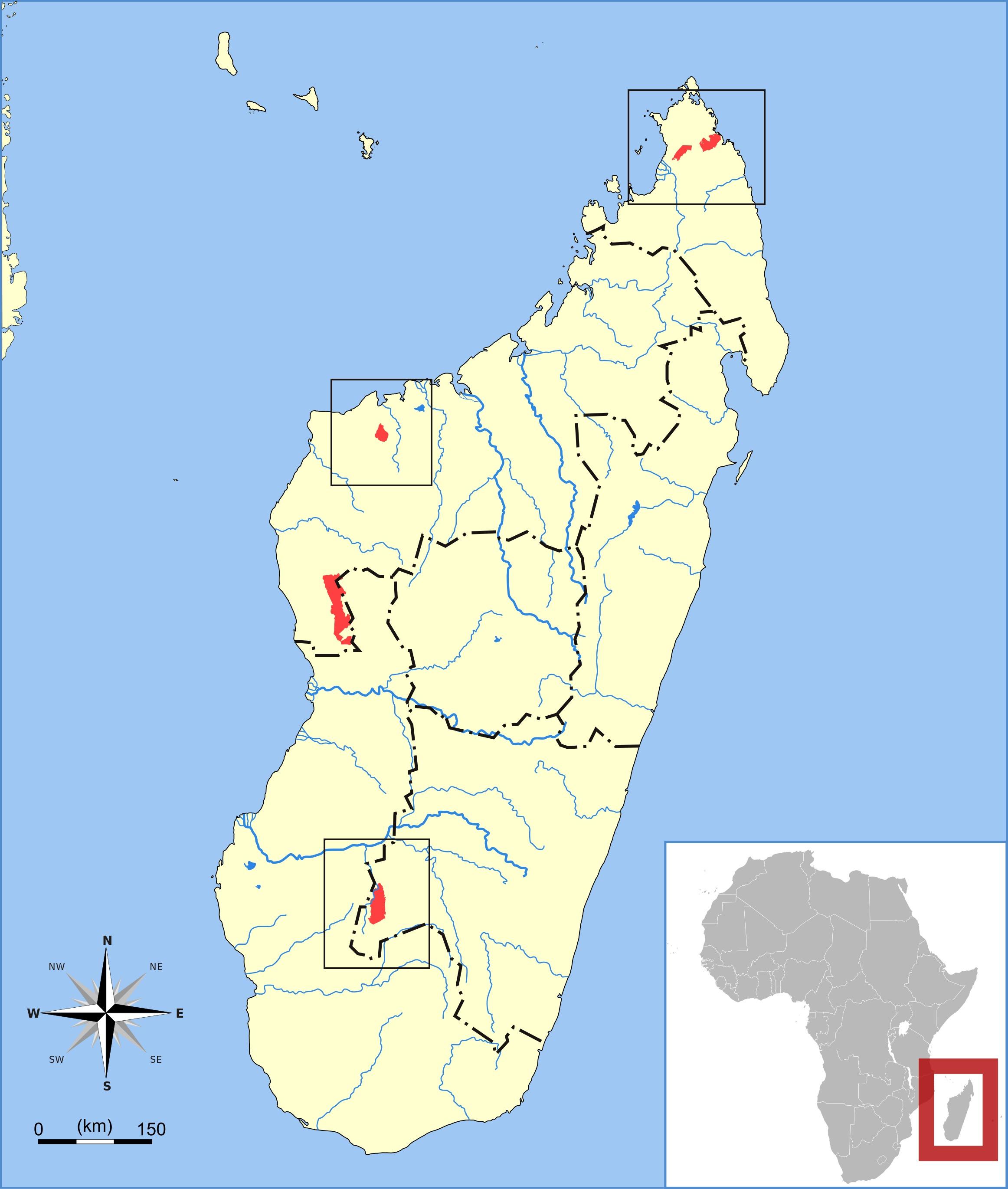 Map of Madagascar Free-tailed Bat