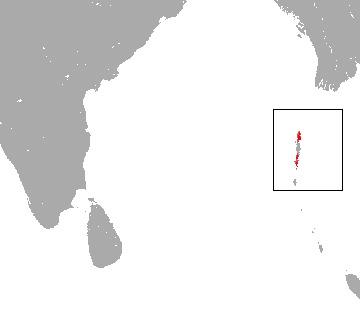 "<span class=""translation_missing"" title=""translation missing: en.medium.untitled.map_image_of, page_name: Andaman Horseshoe Bat"">Map Image Of</span>"