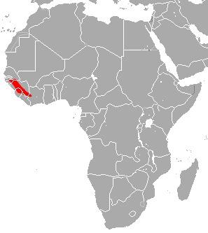 "<span class=""translation_missing"" title=""translation missing: en.medium.untitled.map_image_of, page_name: Guinean Horseshoe Bat"">Map Image Of</span>"