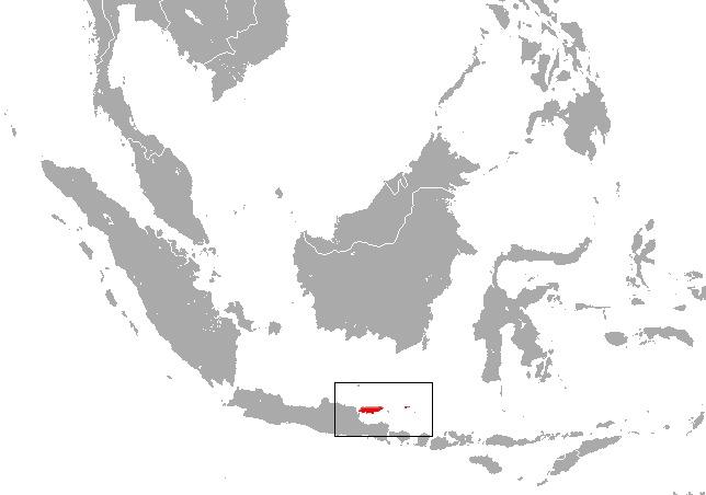 "<span class=""translation_missing"" title=""translation missing: en.medium.untitled.map_image_of, page_name: Madura Horseshoe Bat"">Map Image Of</span>"