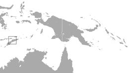 "<span class=""translation_missing"" title=""translation missing: en.medium.untitled.map_image_of, page_name: Timorese Horseshoe Bat"">Map Image Of</span>"