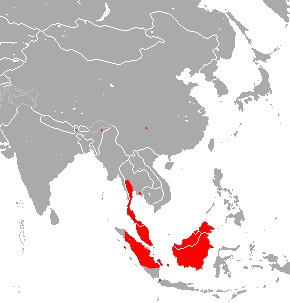 "<span class=""translation_missing"" title=""translation missing: en.medium.untitled.map_image_of, page_name: Trefoil Horseshoe Bat"">Map Image Of</span>"