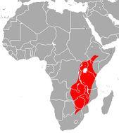 "<span class=""translation_missing"" title=""translation missing: en.medium.untitled.map_image_of, page_name: Hildebrandt&#39;s Horseshoe Bat"">Map Image Of</span>"