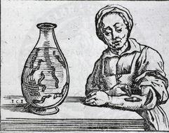 Image of European Medicinal Leech